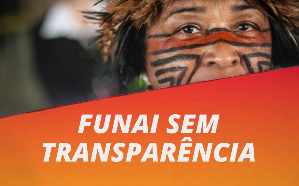 Mais de 60% das informações divulgadas pela Funai têm baixa qualidade, diz estudo