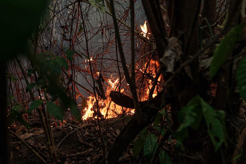 Infrações ambientais por queimadas chegam a R$ 20 milhões em 2021
